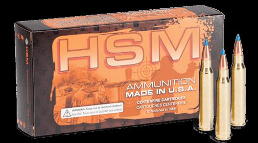 Varmint ammo box with three cartridges